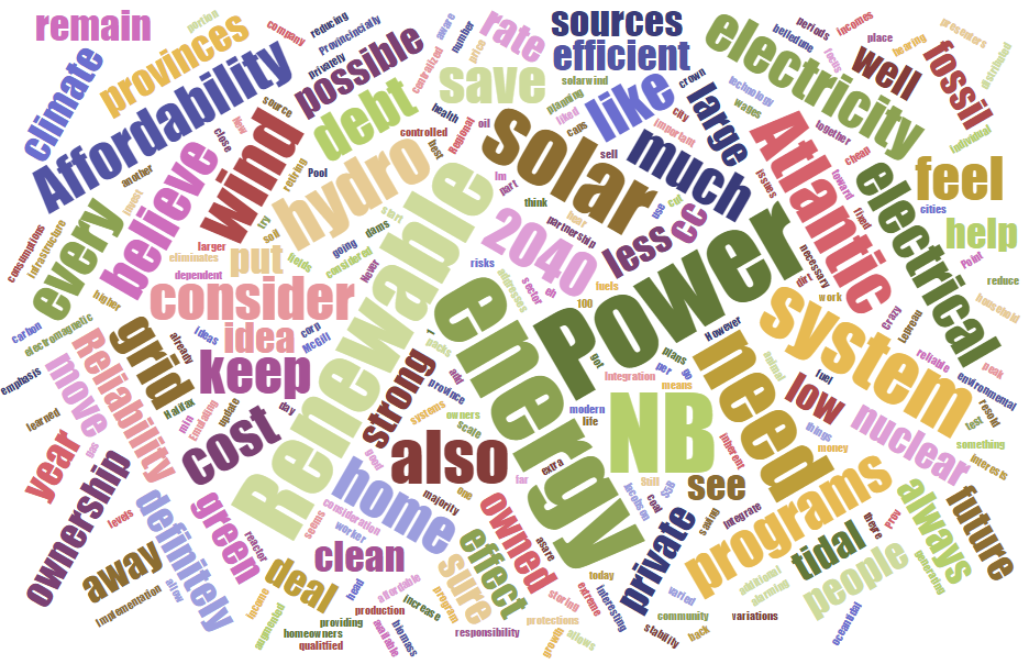 Word cloud based on statements from participants after the energy 'crash course' and before deliberation.