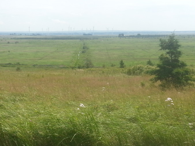 Sprott wind turbines at Amherst as seen from Fort Beausejour, with dykelands between