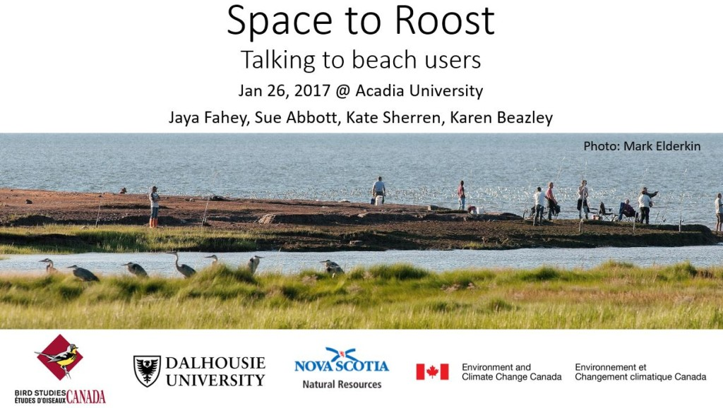 My presentation cover slide from the January 26, 2017, meeting of Space to Roost partners.