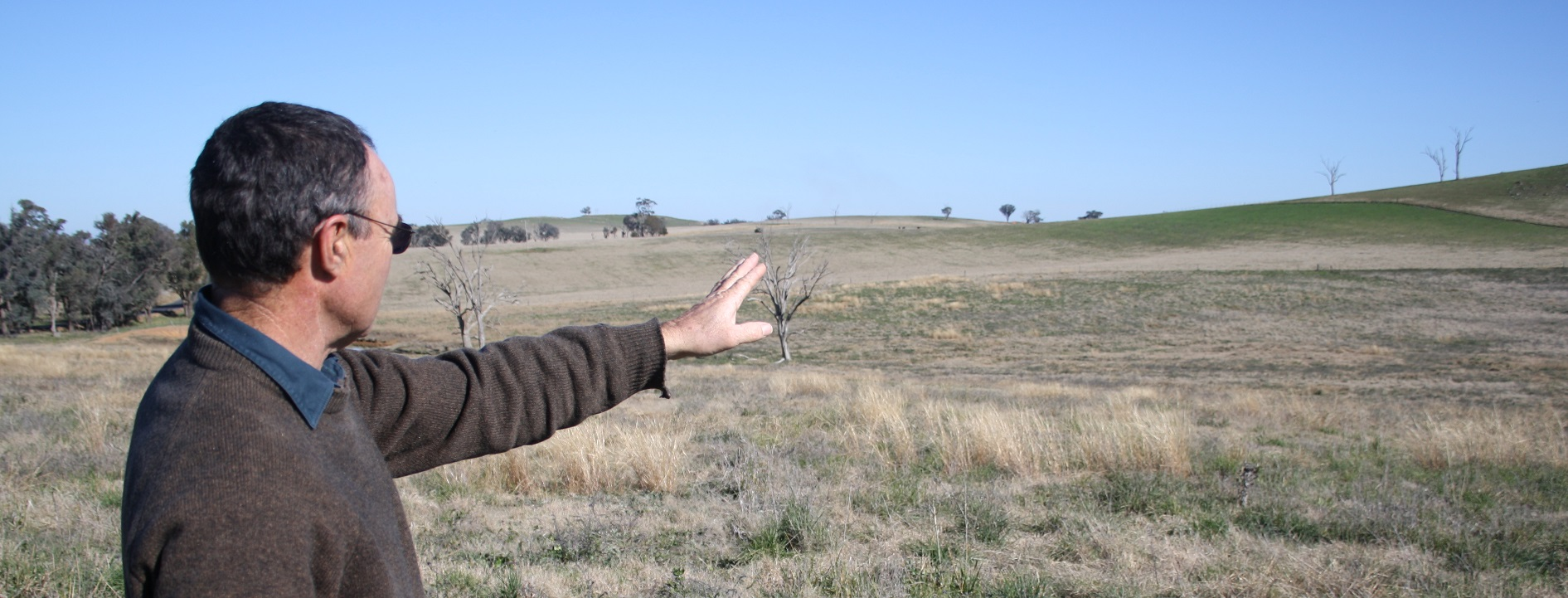 Australian grazier Gary Johnson, appraising tree decline on his farm, 2010.
