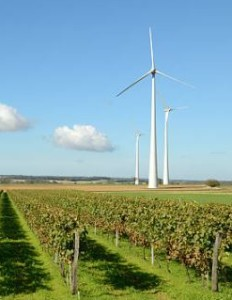 Vineyards and wind turbine. iStock credit: Petagar