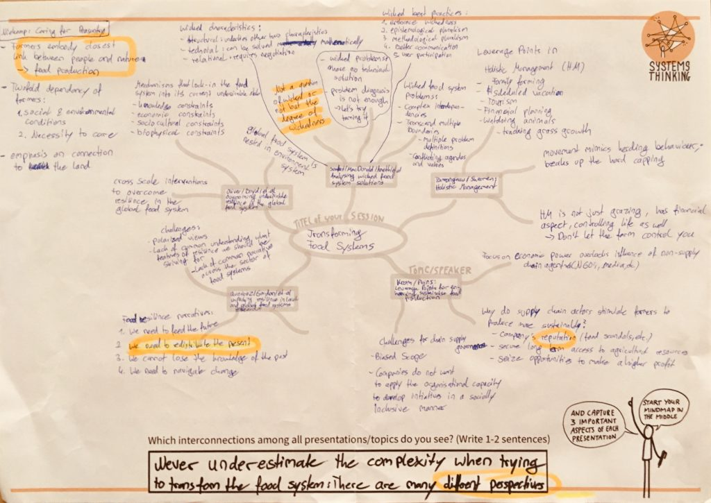 Graphic mind map of our session at Leverage Points 2019.