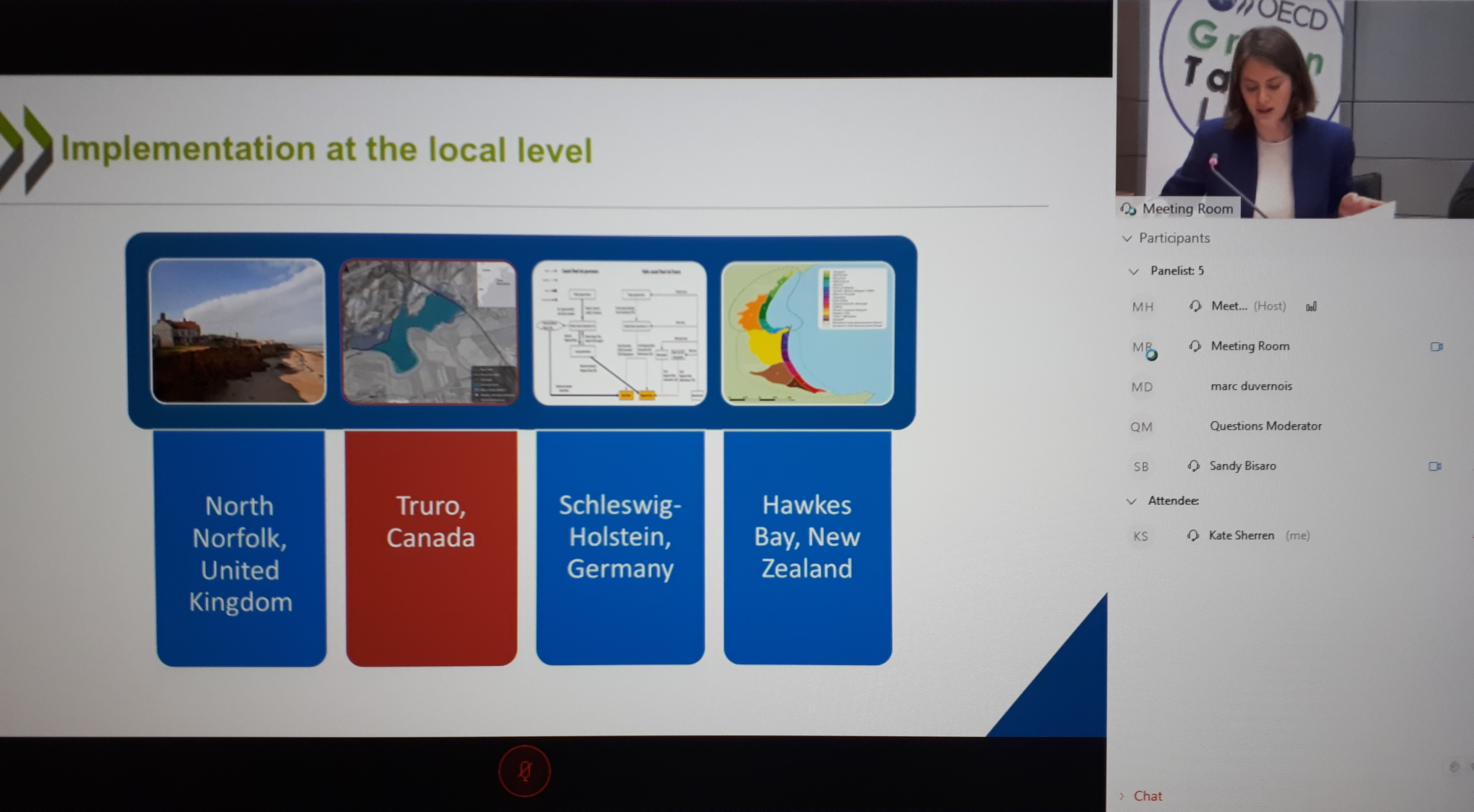 OECD's Lisa Danielson speaks to the Truro case study at the Rising Seas webinar, March 6, 2019