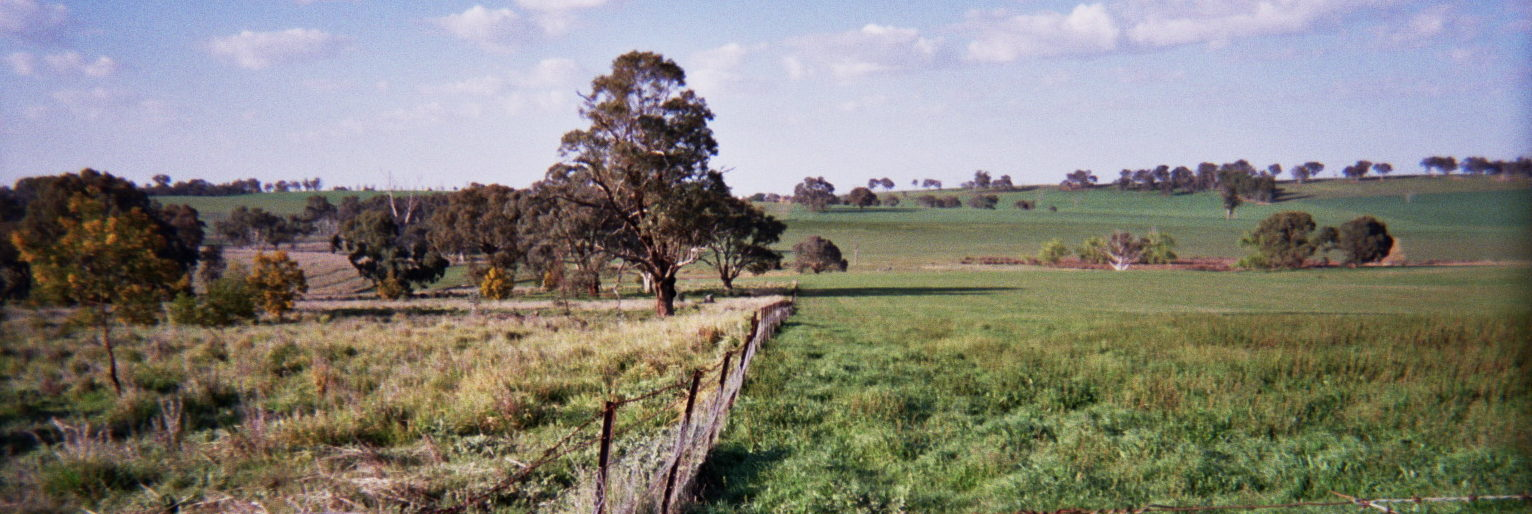 Archetypal land sharing in the Australian southeastern grazing landscape, thanks to HM